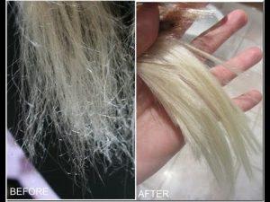 dead hair