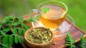moringa tea for diabetes