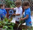 Преимущества садоводства в раннем детстве