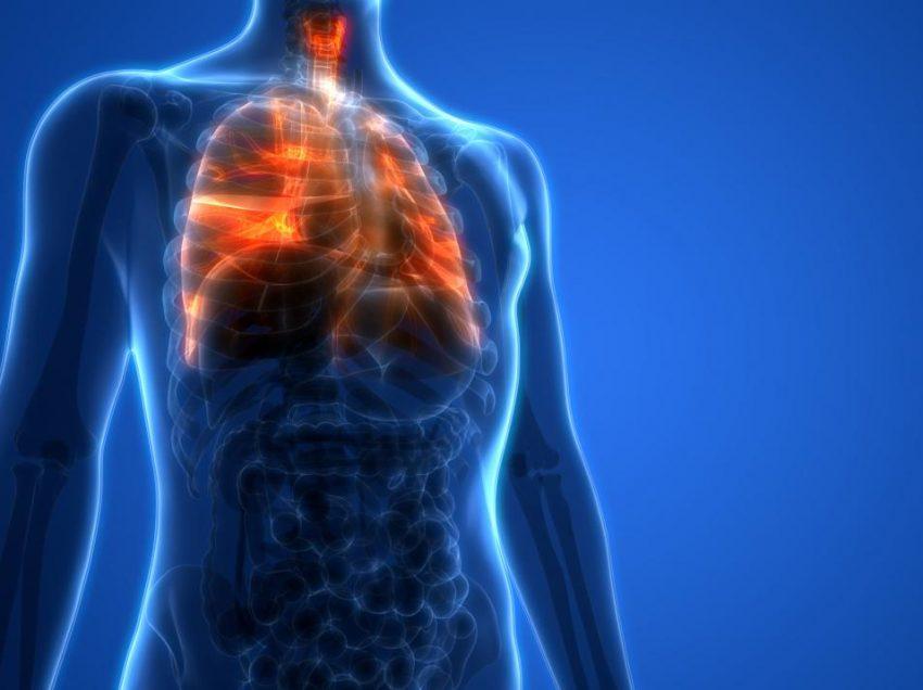 15 продуктов для поддержания здоровья органов дыхания